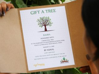 Gift A Tree Best Birthday Gifts